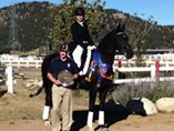 Lauren Ogden – Avalon Dressage