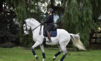 Linda W. DISTINTO's new Owner/Rider