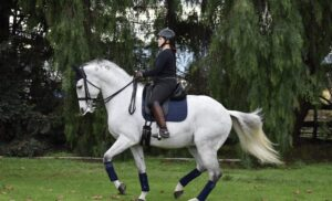 Linda W. DISTINTO's new Owner/Rider